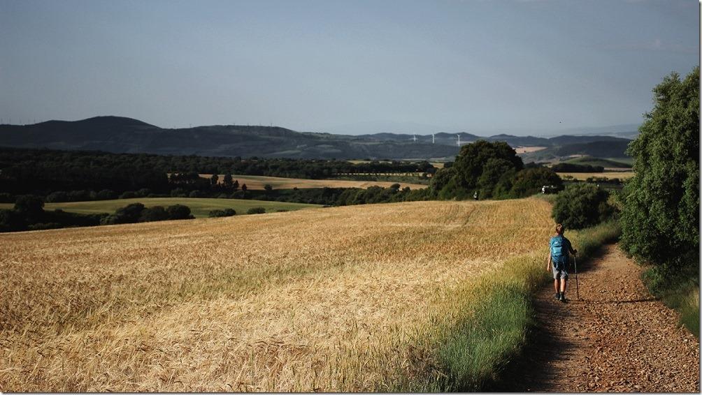 Camino-frances-uterga-ble
