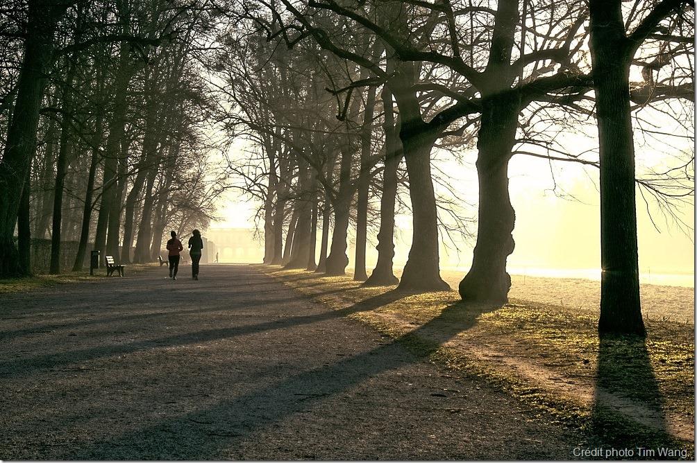 Course à pied - Préparation physique randonnée
