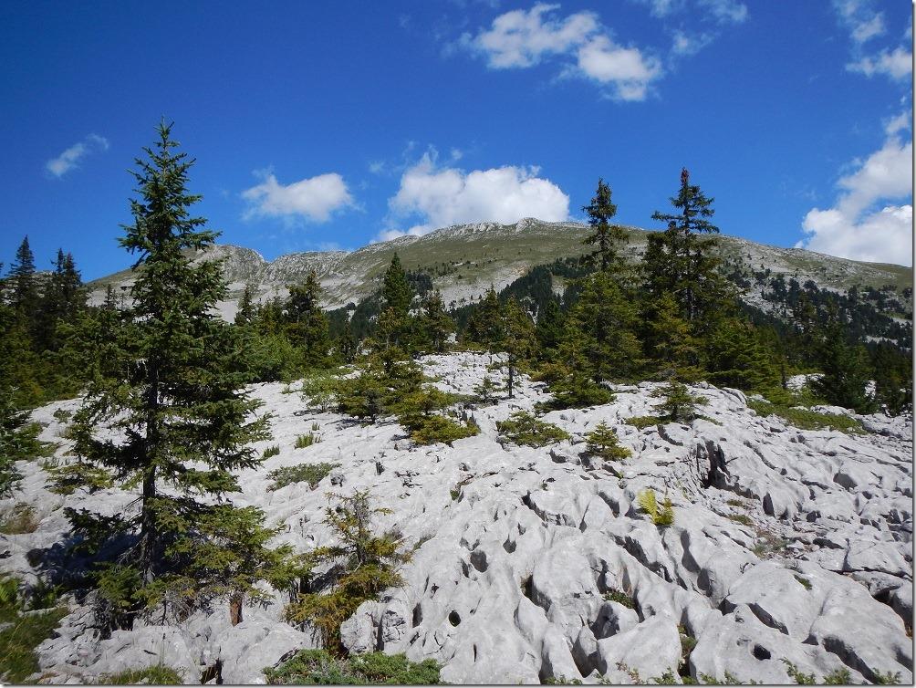 Karsts - Hauts-Plateaux du Vercors