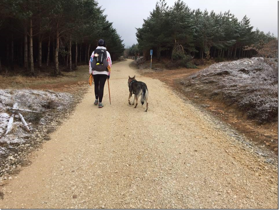 Camino Francès - Marion et Oscar
