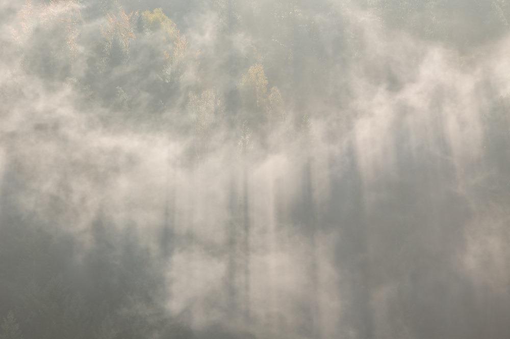Pour vos randonnées, attention aux restrictions d'accès aux massifs forestiers dans le sud de la France