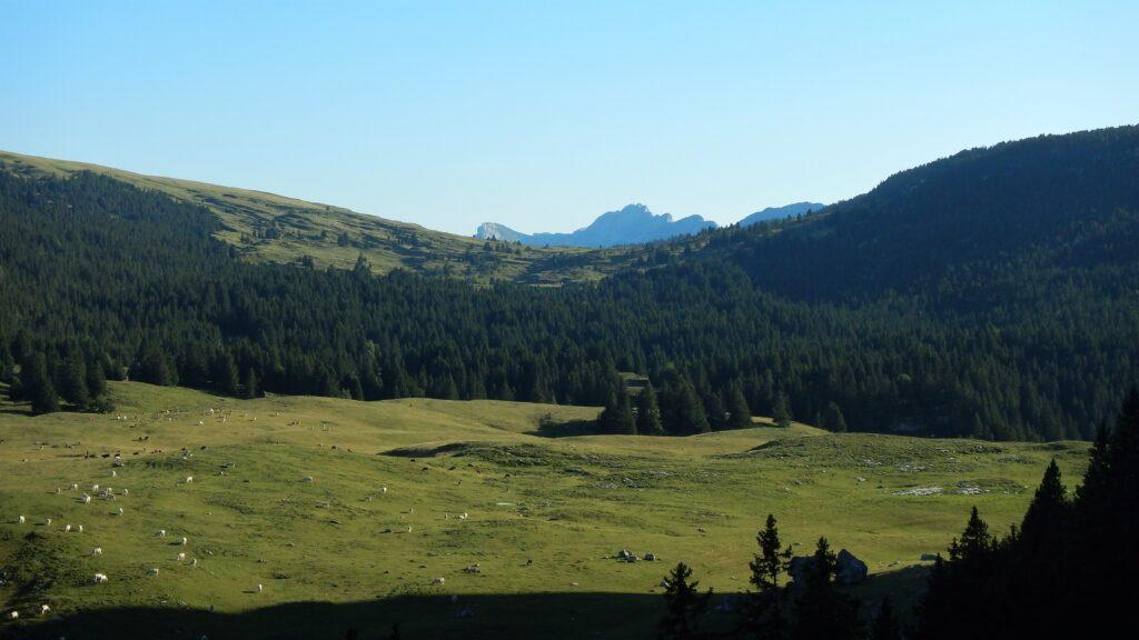 Alpette et vue sur le col de Bellefont au loin