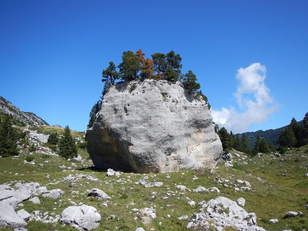 Un bloc calcaire chevelu en Chartreuse