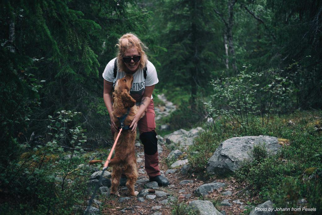Randonner avec un chien