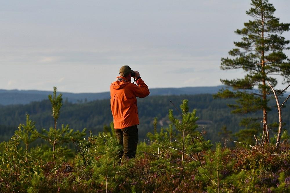 Bien observer son environnement en randonnée, c'est important.