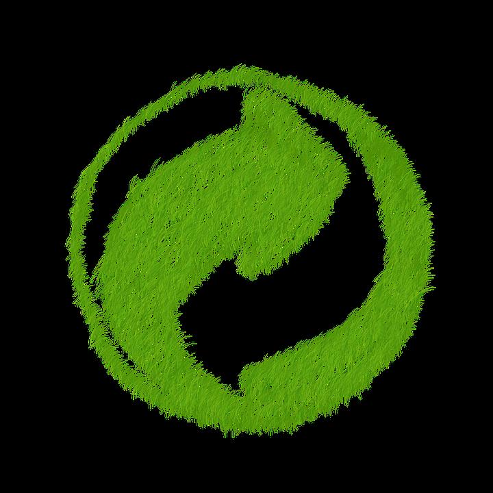 Détecter le greenwashing